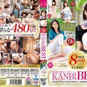 絶対的美淑女メーカー KANBi BEST 8時間 vol.2