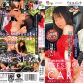 DRESS PARTY CAR SEX~理知的美女と愉しむカーセックス~